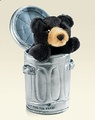 bearcan5000_120