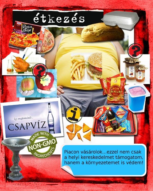 Nulla Hulladék Kvíz 2013 - Étkezés